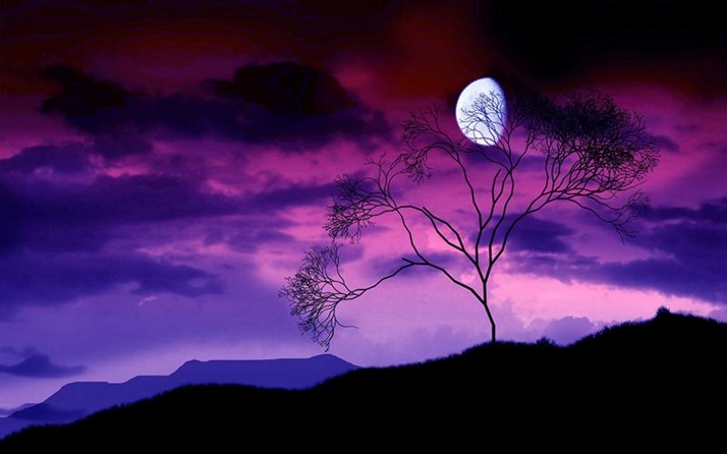 Gece Karanlığında Ay Manzarası Alacakaranlık Kanvas Tablo