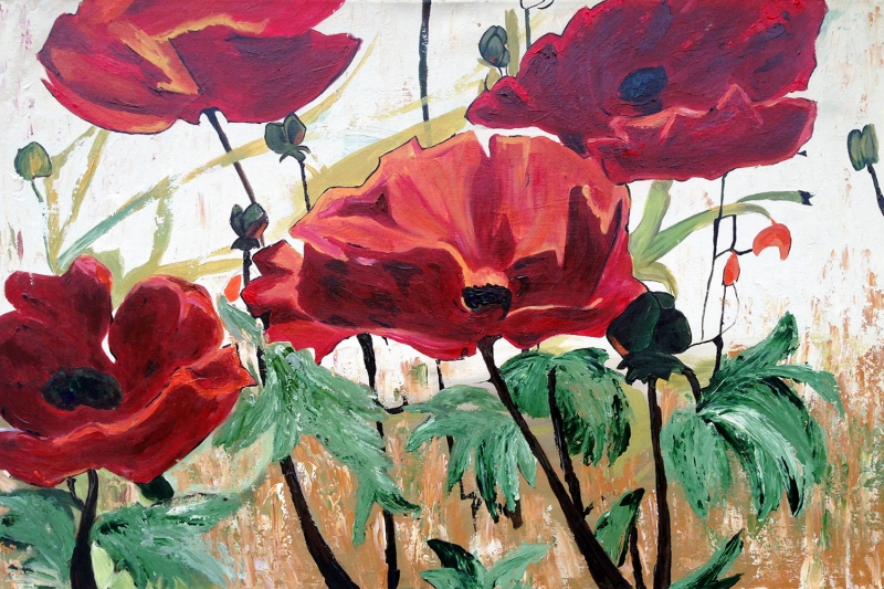 Gelincikler 4 Renkli Çiçekler Yağlı Boya Sanat Kanvas Tablo