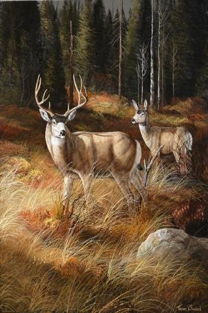 Geyik-25 Hayvanlar Modern Sanat Kanvas Tablo