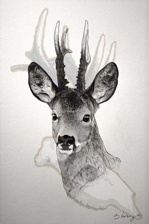 Geyik-37 Hayvanlar Modern Sanat Kanvas Tablo