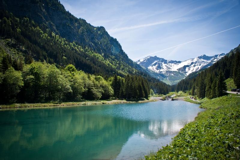 Göl Dağ Orman 8 Berrak Su Güzel Doğa Manzaraları Kanvas Tablo