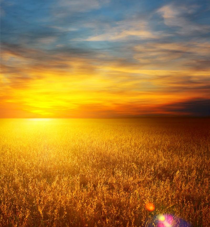 Gün Batımı 5 Doğa Manzaraları Kanvas Tablo