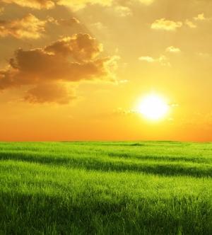 Gün Batımı 6 Doğa Manzaraları Kanvas Tablo