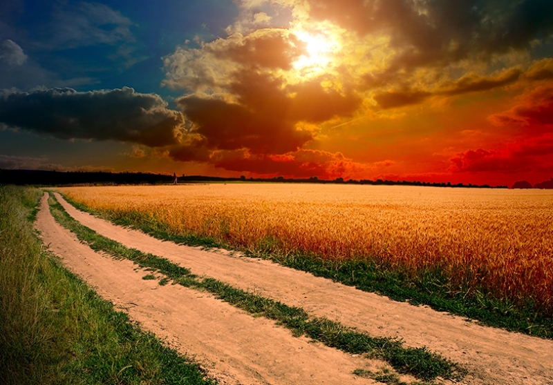 Gün Batımı Doğa Yol Kanvas Tablo