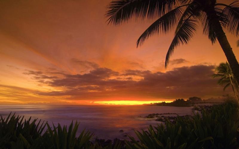 Gün Batımı Sahil 8 Doğa Manzaraları Kanvas Tablo