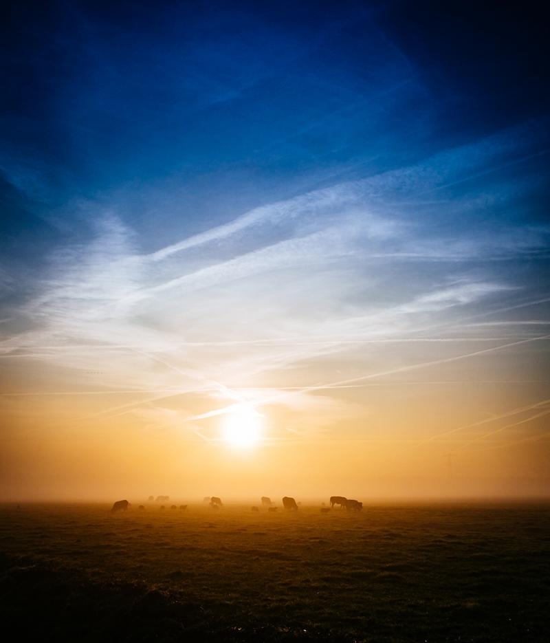 Gün Doğumu Doğa Manzaraları Kanvas Tablo