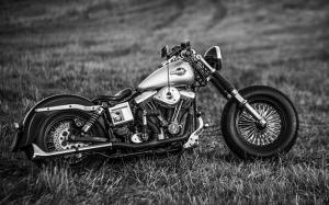 Harley Davidson Motorsiklet Siyah Beyaz Araçlar Kanvas Tablo