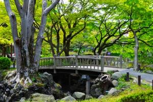 Hibiya Köprüsü Doğa Manzaraları Kanvas Tablo
