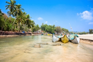 Hint Okyanusu Palmiyeler Doğa Manzaraları Kanvas Tablo