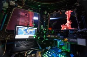 İss 42 43 Cupol Uzay Aracı Dünya & Uzay Kanvas Tablo