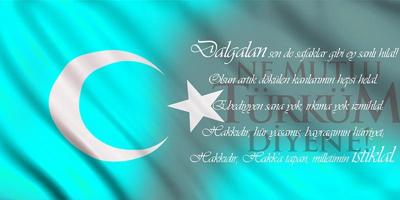 İstiklal Marşı, Baş Komutan Atatürk, Türk Bayrağı-3 Kanvas Tablo