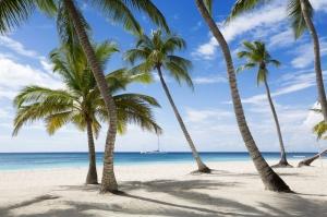 jameyka Karayip Denizi Doğa Manzaraları Kanvas Tablo