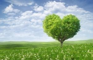 Kalp Ağaç Yeşillik Kanvas Tablo