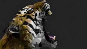Kaplan Hayvanlar Kanvas Tablo 2