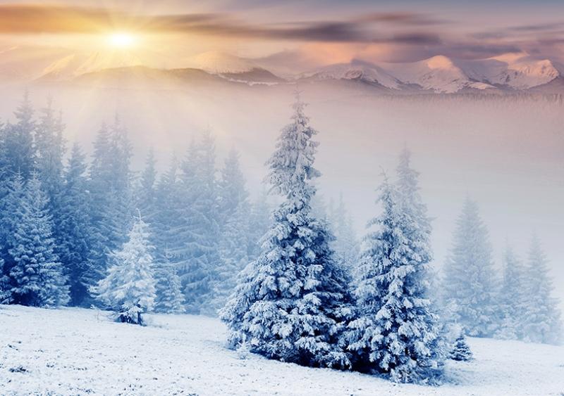 Kar Doğa Manzaraları Kanvas Tablo