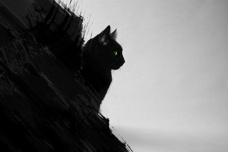 Kara Kedi Hayvanlar Kanvas Tablo