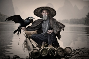 Karabatak ve Balıkçı Hayvanlar Kanvas Tablo