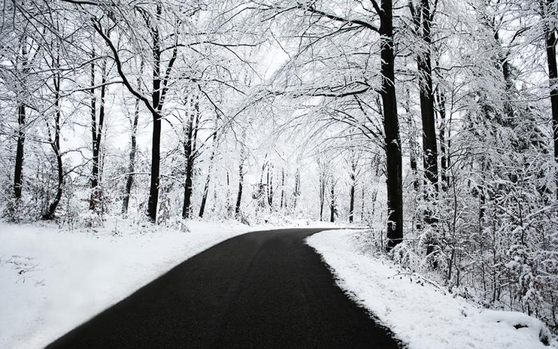 Karlı Orman 2 Doğa Manzaraları Kanvas Tablo