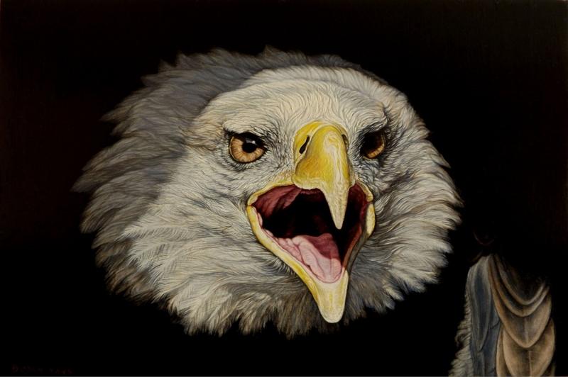 Kartal, Vahşi Kuşlar-2, Hayvanlar, Kuş Temalı Kanvas Tablo