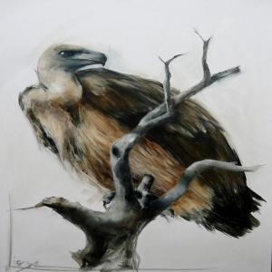 Kartal, Vahşi Kuşlar-4, Hayvanlar, Kuş Temalı Kanvas Tablo