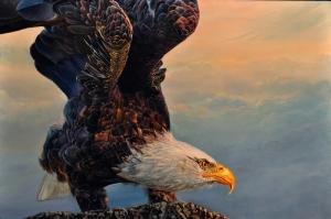 Kartal, Vahşi Kuşlar-5, Hayvanlar, Kuş Temalı Kanvas Tablo