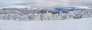 Kış Manzarası Karla Kaplı Dağlar Dağ Evi 3 Doğa Manzaraları Kanvas Tablo