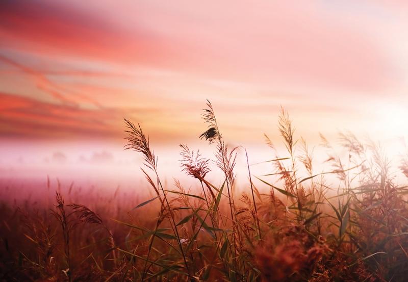 Kızıl Gökyüzü 2 Doğa Manzaraları Kanvas Tablo