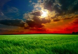 Kızıl Gökyüzü Doğa Manzaraları Kanvas Tablo