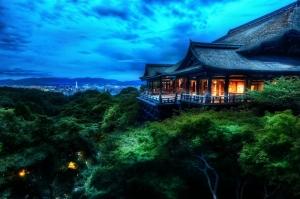 Kore Yeşil Orman HD Doğa Manzaraları Kanvas Tablo