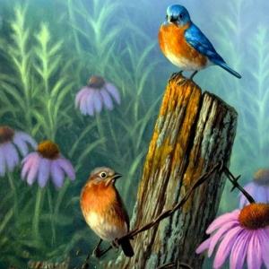 Kuşlar 3, Dekoratif Kanvas Tablo