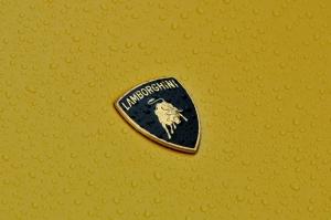 Lamborghini Logo Araçlar Kanvas Tablo