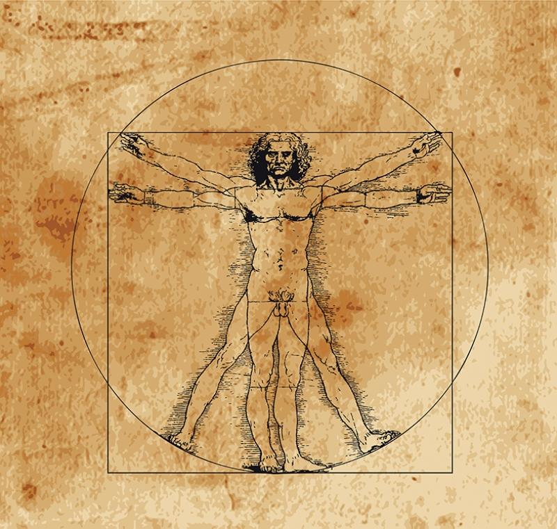 Leonardo Da Vincii Anatomi Tarihi Eski Çizim Yağlı Boya Sanat Kanvas Tablo