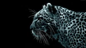 Leopar 4 Hayvanlar Kanvas Tablo