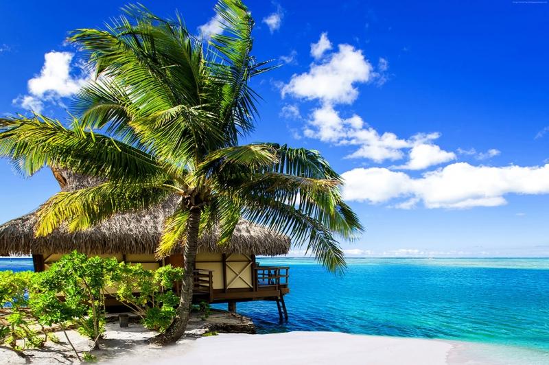 Maldivler Kumsal Doğa Manzaraları Kanvas Tablo