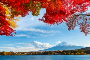 Manzara Dağ Bulut Sonbahar Kanvas Tablo