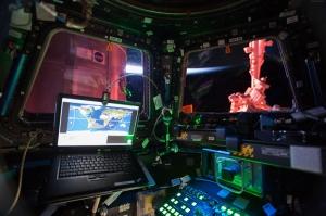 Mekik Kabini Dünya & Uzay Kanvas Tablo
