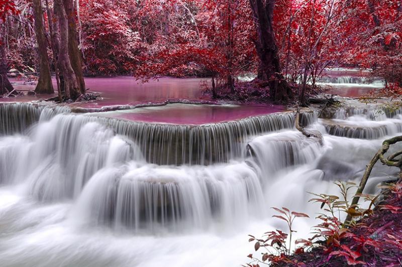 Mor Renkli Doğa ve Şelale Doğa Manzaraları Kanvas Tablo