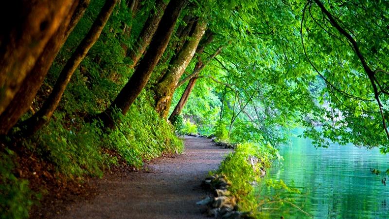 Nehir Kenarı Yürüyüş Yolu Kanvas Tablo