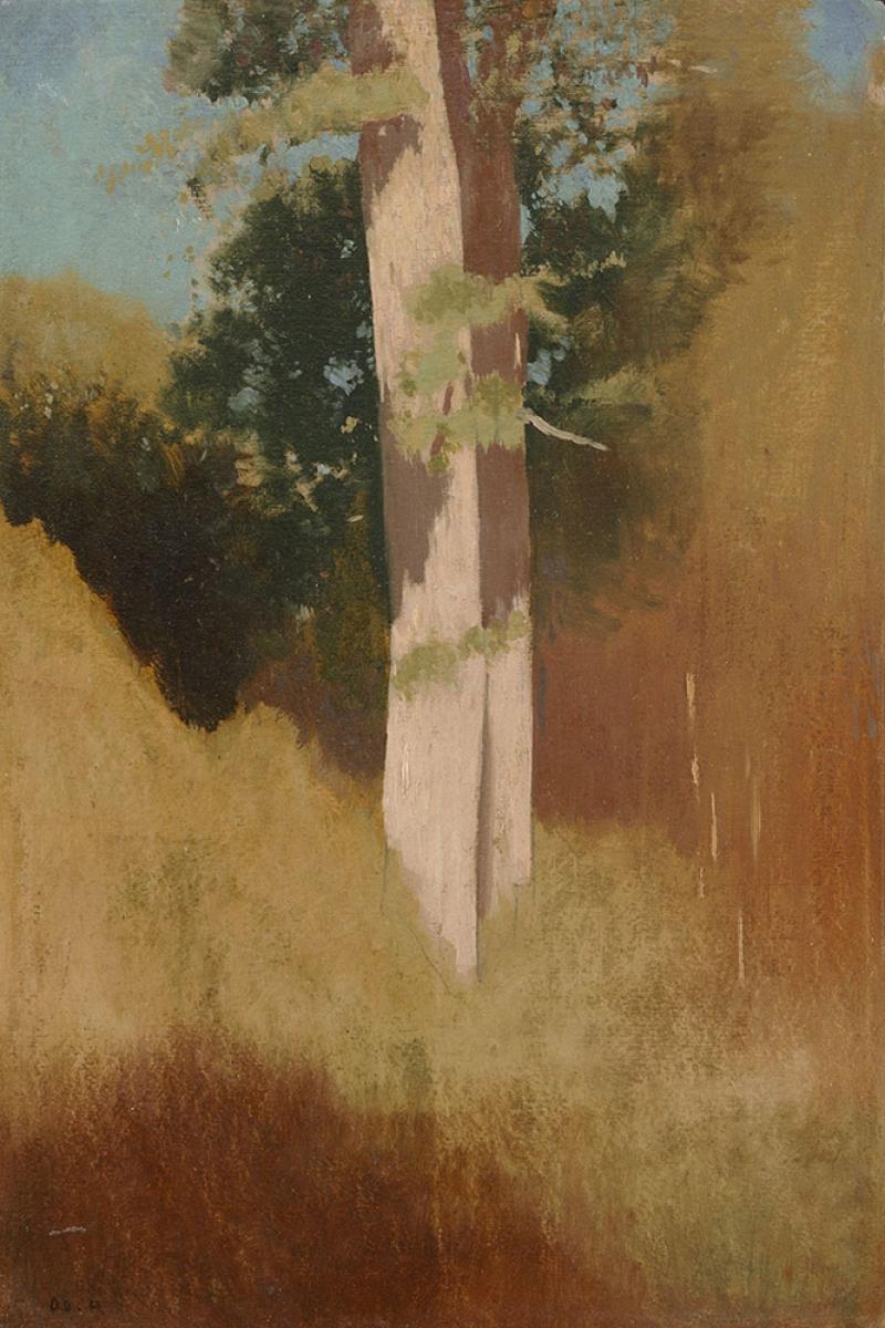 Odilon Redon Mavi Gokyuzunde Agaclar Yagli Boya Klasik Sanat Kanvas Tablo