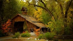 Orman İçinde Ahşap Ev Doğa Manzaraları Kanvas Tablo