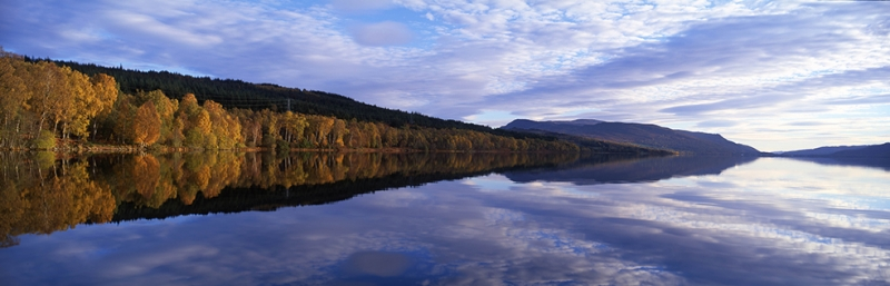 Orman İngiltere Panaromik Kanvas Tablo