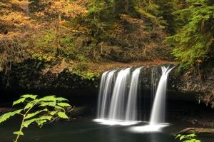 Orman ve Şelale Manzarası Kanvas Tablo