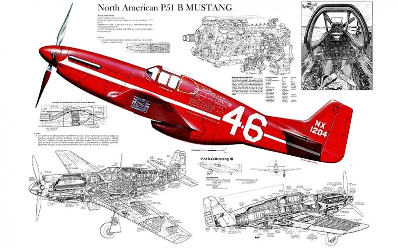 P 51 Mustang Retro Uçak İllustrasyon Askeri Kanvas Tablo