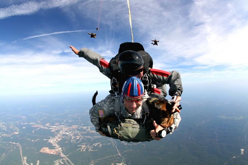 Paraşüt ile Atlayan Asker Askeri Kanvas Tablo
