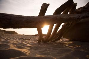 Plaj Gün Batımı Fotoğraf Kanvas Tablo
