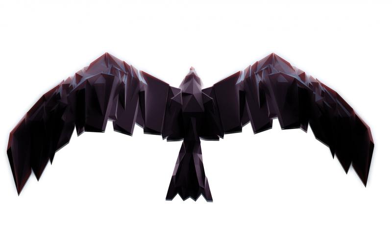 Polygon Kuş Abstract Kanvas Tablo