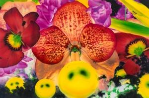 Rengarenk Orkide 4 Yağlı Boya Dekoratif Kanvas Tablo