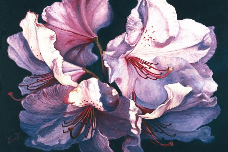 Renkli Çiçekler 3 Lila Bahçesi Çiçekleri Kanvas Tablo