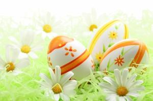 Renkli Yumurtalar ve Beyaz Papatyalar Fotoğraf Kanvas Tablo