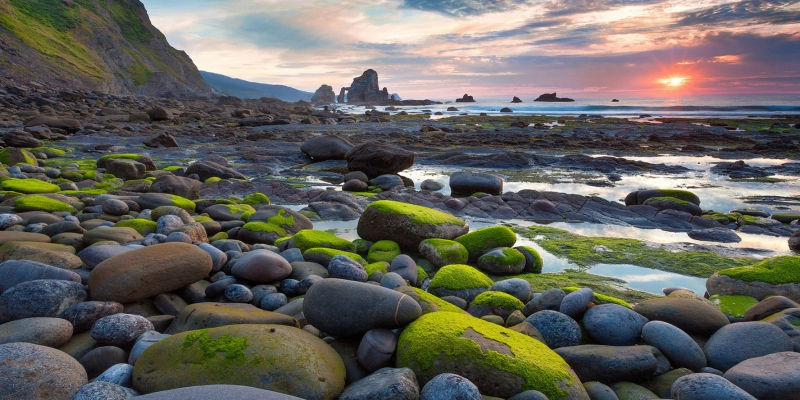 Sahil Deniz Gün Batımı Doğa Manzaraları Kanvas Tablo